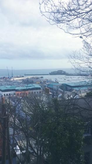 Beautiful Guernsey